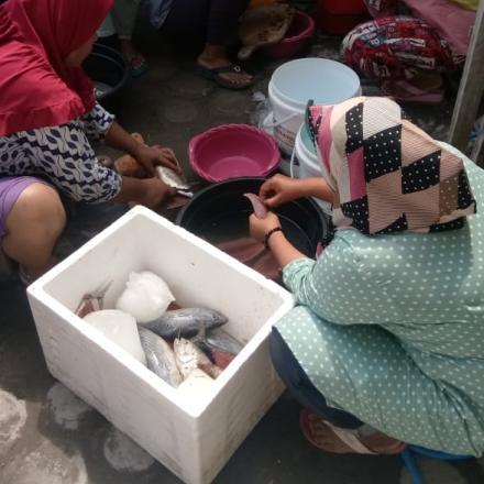 Pelatihan Pengelolaan Ikan Desa Karangharjo